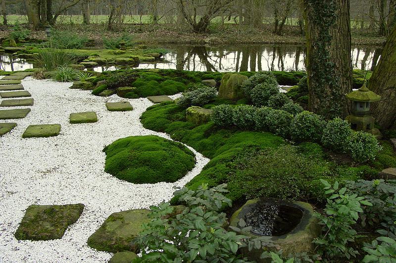 Moos Moose In Japanischen Gärten Als Wichtigste Bodendecker